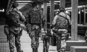 Militari sui treni