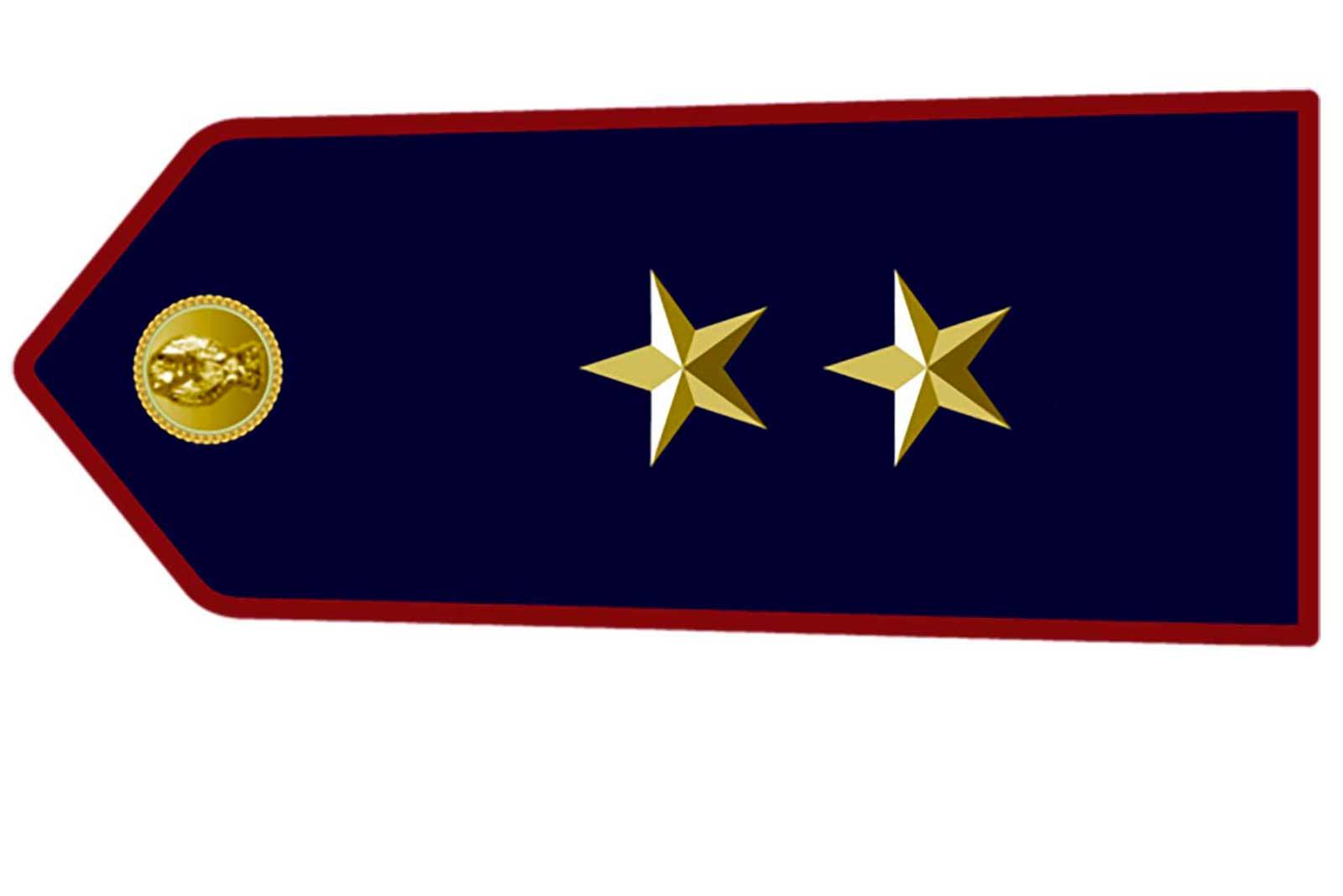 vice commissario polizia