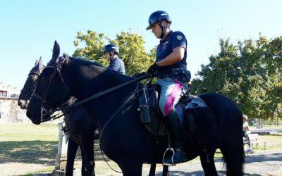 polizia-a-cavallo-5
